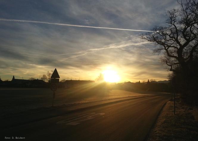 Sonne, Morgen, Straße, Baum, Landschaft,