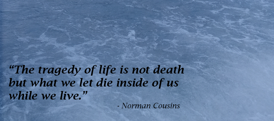 Norman Cousins, importance, life, inside