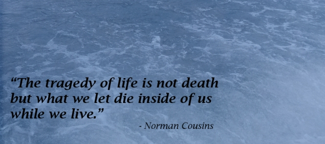 Norman Cousins, importance, life, inside